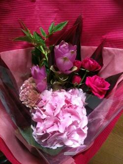 110723_flower2