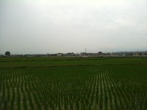 Ayanasu1_1577